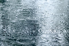 Raindrops ripples on a water surface Royalty Free Stock Photos