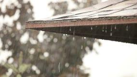 Raindrops spada na dachu pawilon w parku, raindrops przepływu puszek, zakończenie zbiory