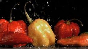 Raindrops spada w super zwolnionym tempie na warzywach zbiory wideo