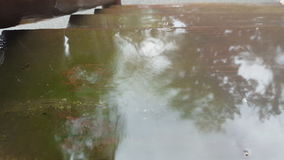 Raindrops Splashing In Shallow Reflective Puddle stock video footage