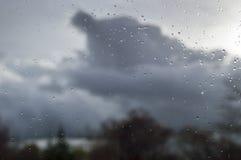 Raindrops Stock Photography
