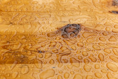 raindrops table trä Arkivfoto