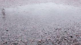 Raindrops w kałuży Fotografia Royalty Free