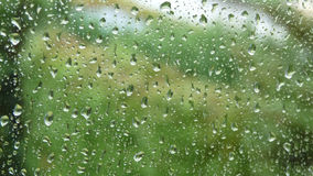 Raindrops on a window. With a view of the green natural background Stock Image
