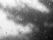 Raindrops on the window. Raindrops hit a window pane in focus, while a stormy gray tree looms in the blurred background. Suitable as a background Stock Images