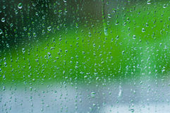 Raindrops in the window Stock Photography