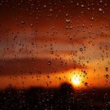 Raindrops on window glass. Stock Photography