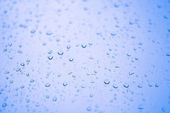 Raindrops. Stock Photography