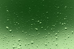 Raindrops. Stock Image