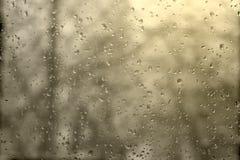 Raindrops on window Stock Images