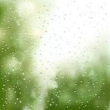Raindrops on the window Royalty Free Stock Photo