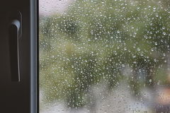 Raindrops on windows glass Stock Images