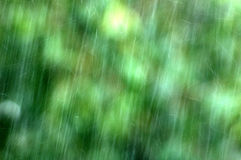 Rainfall Royalty Free Stock Image