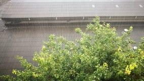 Rainfall. Torrential rain.Very heavy rainfall stock photography