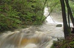 Rainfloods, Pennsylvania Stockbild