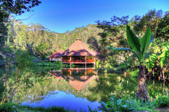 Rainforest cabin Royalty Free Stock Image