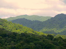 Rainforest in Dominica. Rainforest hills in different light in Caribbean island Royalty Free Stock Photo