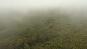 Rainforest in the fog. Jawa island, Indonesia. Stock Footage. Low lying cloud over evergreen forests. Aerial view of over tropical rainforest mountains with Stock Images