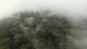 Rainforest in the fog. Jawa island, Indonesia. Stock Footage. Low lying cloud over evergreen forests. Aerial view of over tropical rainforest mountains with Royalty Free Stock Photo