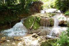 Rainforest gardens, right beside a stunning waterfall in Cayo Levantado, Dominican Republic. Stock Photo