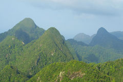 Rainforest hills on Langkawi island Stock Images