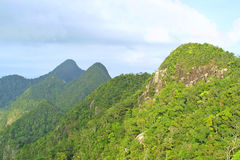 Rainforest hills on Langkawi island Stock Images