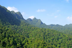 Rainforest hills on Langkawi island Royalty Free Stock Photo