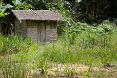 Rainforest hut. A little house made of wood in the african rainforest Royalty Free Stock Photography