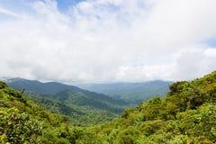 Rainforest landscape in Monteverde Costa Rica. Rainforest landscape view in Monteverde Costa Rica Royalty Free Stock Images