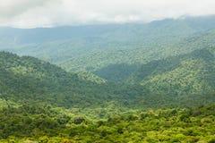 Rainforest landscape in Monteverde Costa Rica. Rainforest landscape view in Monteverde Costa Rica Royalty Free Stock Photos