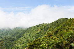 Rainforest landscape in Monteverde Costa Rica. Rainforest landscape view in Monteverde Costa Rica Royalty Free Stock Photography
