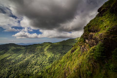 Rainforest and mountains Royalty Free Stock Photos