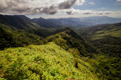 Rainforest and mountains Royalty Free Stock Photo