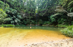Rainforest natural pool Royalty Free Stock Photography