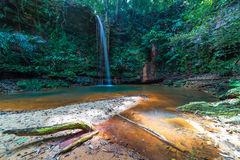 Rainforest natural pool Royalty Free Stock Images
