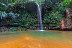 Rainforest natural pool. Stunning multicolored natural pool in the thick rainforest of Lambir Hills National Park, Borneo, Malaysia Stock Images
