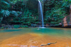 Rainforest natural pool. Stunning multicolored natural pool in the thick rainforest of Lambir Hills National Park, Borneo, Malaysia Stock Photos