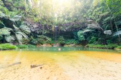 Rainforest natural pool and waterfall Royalty Free Stock Photo