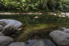 Rainforest Pool. Deep pool in rainforest gorge Stock Photos