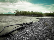 Rainforest River And Mountain Stock Photography