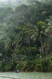 Rainforest's rainy day Royalty Free Stock Image