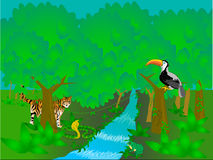 Rainforest scene. Illustration of a rainforest with animals Stock Photography