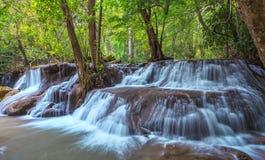 Rainforest waterfal Royalty Free Stock Photos