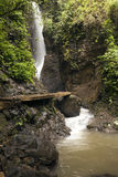 Rainforest Waterfall Stock Image