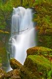 Rainforest Waterfall Royalty Free Stock Photos