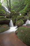 Rainforest waterfalls. Waterfall located in deep forest of Thailand Royalty Free Stock Photography