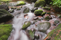 Rainforest waterfalls. Small Waterfall located in deep forest of Thailand Stock Photos