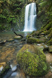 Rainforest waterfalls, Beauchamp Falls, Australia Stock Photography