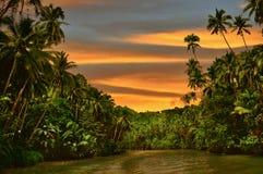 rainforestflodsolnedgång arkivfoton