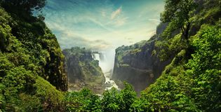 Rainforests are forests characterized by high rainfall. With annual rainfall in the case of tropical rainforests between 250 and 450 centimetres, and stock photo